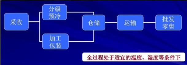 农产品冷链物流流程